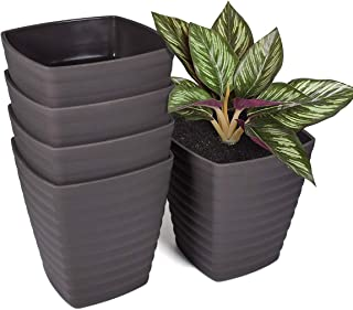 Flower Pots 6 inch, 5 Set of Plant Pots with Drainage Hole and Stoppers, Square Plastic Pots for Tulips, Carnation, Daffod...