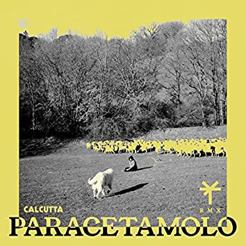 Paracetamolo (TY1 Remix)