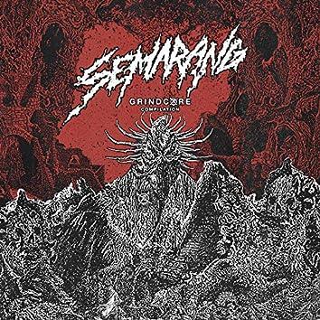 Semarang Grindcore Compilation