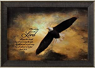 Hope in The Lord Soaring Eagle 18 x 12 Wood Framed Wall Sign Plaque