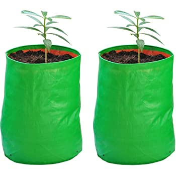 YUVAGREEN Terrace Gardening Leafy Vegetable Grow Bag (Green, 18x24-inch) - Pack of 2