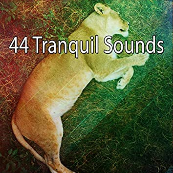 44 Tranquil Sounds