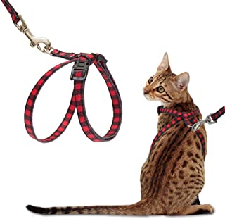 PUPTECK Cat Harness with Leash Set - Adjustable Soft Strap with Figure 8 Style Harness, Adorable and Special