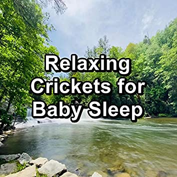 Relaxing Crickets for Baby Sleep
