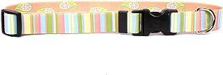 Yellow Dog Design Melon Stripes Dog Collar – Size Medium – 1 Inch Wide