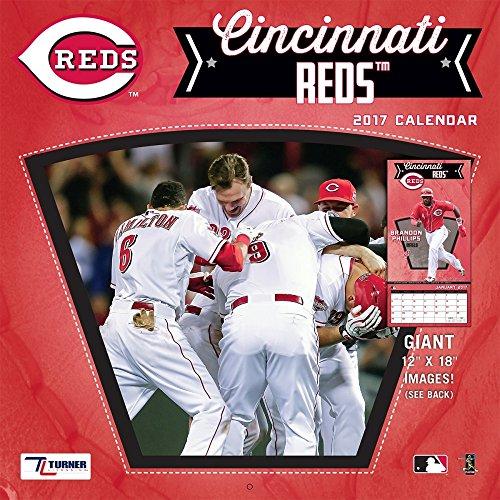 "Turner Licensing Sport 2017 Cincinnati Reds Team Wall Calendar, 12""X12"" (17998011846)"