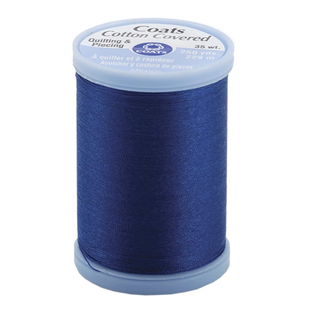 COATS & CLARK S925-4470 Cotton Covered Quilting and Piecing Thread, 250-Yard, Yale Blue