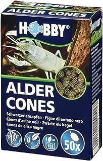 Hobby Alder Cones Pack of 50