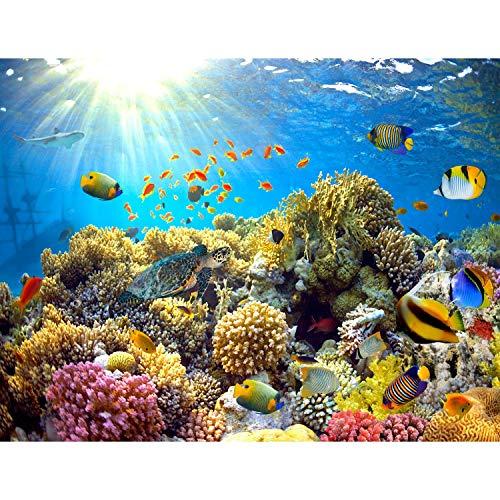 Fototapete Aquarium Unterwasser 352 x 250 cm Vlies Tapeten Wandtapete XXL Moderne Wanddeko Wohnzimmer Schlafzimmer Büro Flur Bunt 9073011a