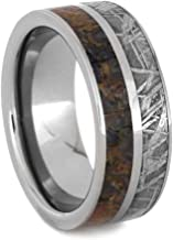 Jewelry By Johan Titanium Ring with Meteorite and Dinosaur Bone, Unique Men's Wedding Band