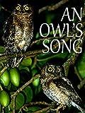 An Owl's Song