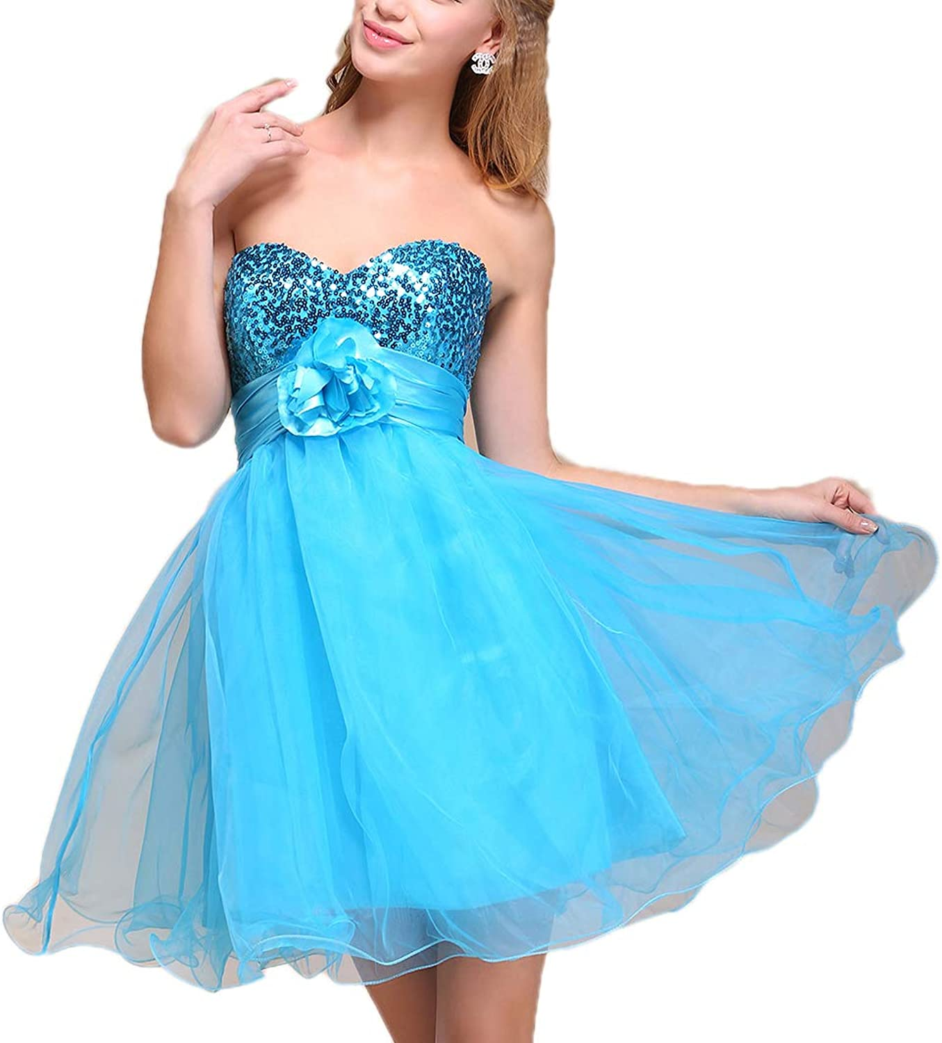 Miaolian Grils Sleeveless Tulle Ball Gown Prom Short Dress H009
