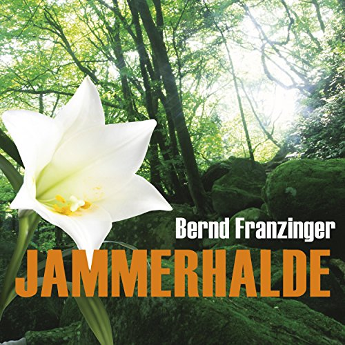 Jammerhalde audiobook cover art