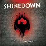 Songtexte von Shinedown - Somewhere in the Stratosphere
