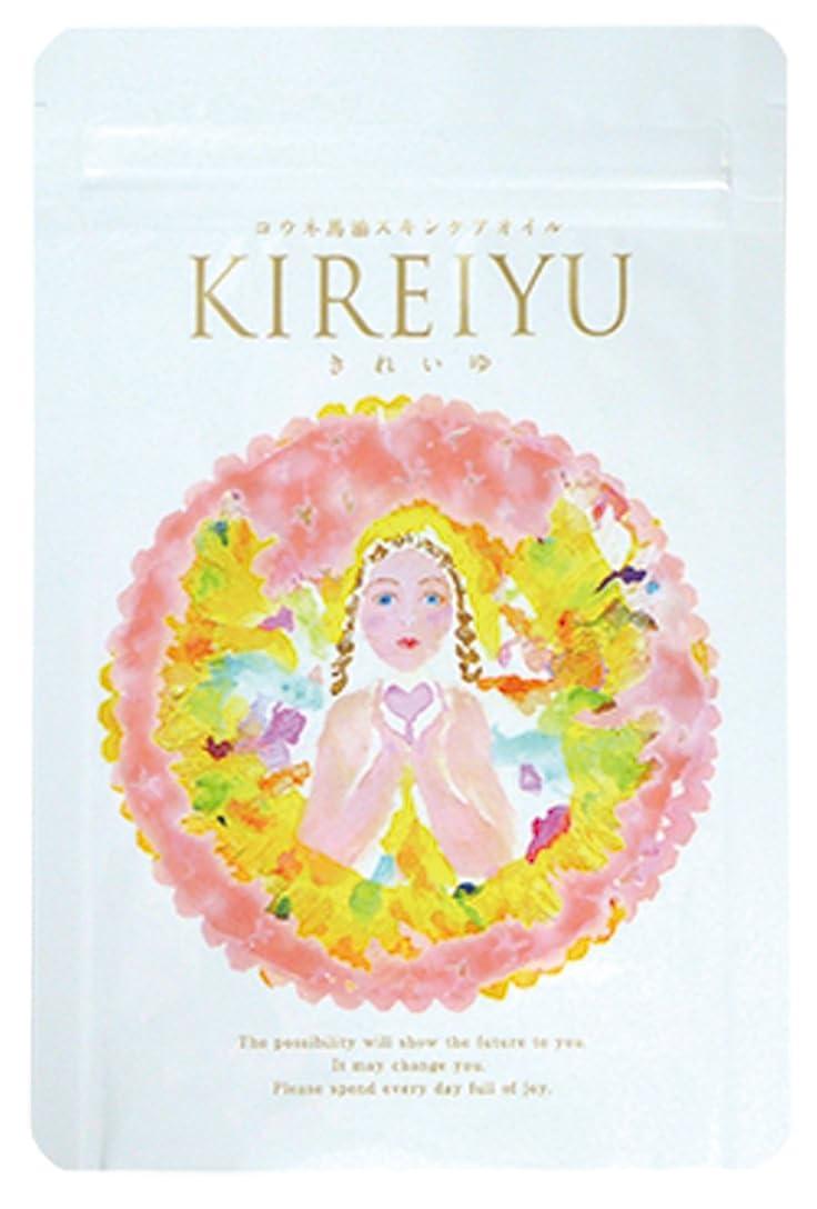 ノート昨日介入するきれいゆ Kireiyu