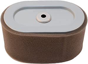 Stens Air Filter Combo, Briggs and Stratton 797033, ea, 1