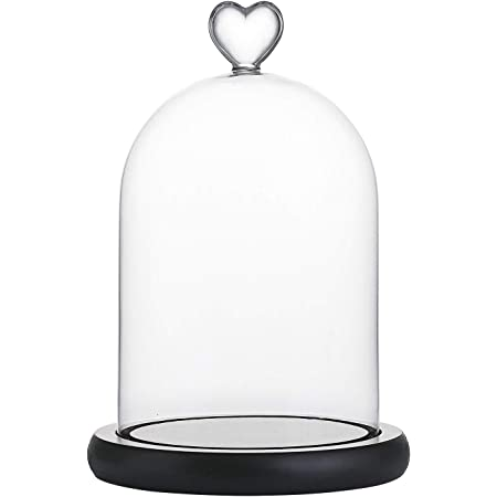 Glass Display Bell Jar Dome Cloche With Base Decor Desk Vintage Stand Cover