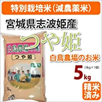 ≪特別栽培米(減農薬米)≫宮城県志波姫産白鳥農場のお米「つや姫」生産者「白鳥一彦」5kg