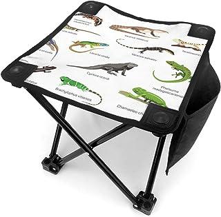 アウトドア 椅子 異なる種類のトカゲ アウトドア 椅子 ピクニック 釣り コンパクト イス 持ち運び キャンプ用軽量 収納バッグ付き 折りたたみチェア レジャー 背もたれなし