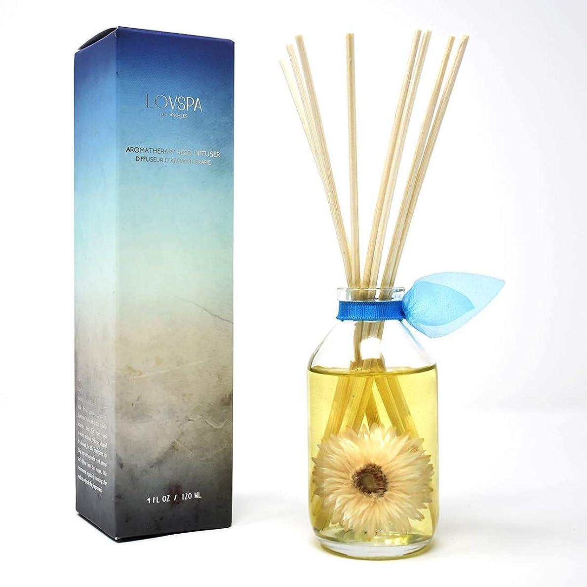 通信網欠如収入lovspa Fragrance Diffusers?–?Nature & Woodsコレクション グリーン LOVPSA-MINI-WOODSY-SEA SALT