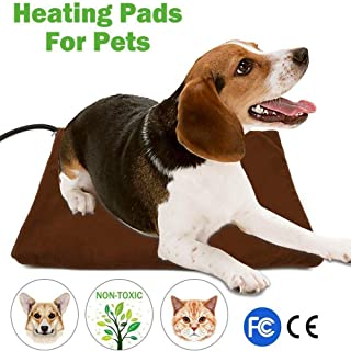 anti chew dog bed uk
