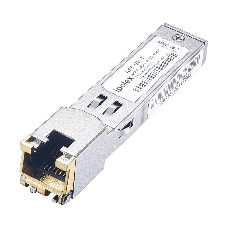 おじいちゃん代名詞消費者【在庫処分】ipolex【Amazon.comで実績持ち】Netgear AGM734-10000S互換 1000Base-T RJ45コネクタ100m sfp 3年保証