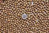 America's Best Koi Food 5 lbs Koi Food Large 3/16 Inch - 1/4 Inch Pond Pellets with 32% Protein