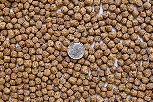 America's Best Koi Food 25 lbs Koi Fish Food 3/16 Inch - 1/4 Inch Large Floating Pond Pellets - Heavy Duty Sealed Bag