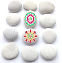 BigOtters Painting Rocks, 12 Rocks for Painting Kindness Rocks Range from About 2 to 3 inches, About 3.7 pounds of Rocks