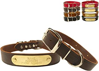 Warner Cumberland Leather Dog Collar Free Engraved Brass ID tag USA