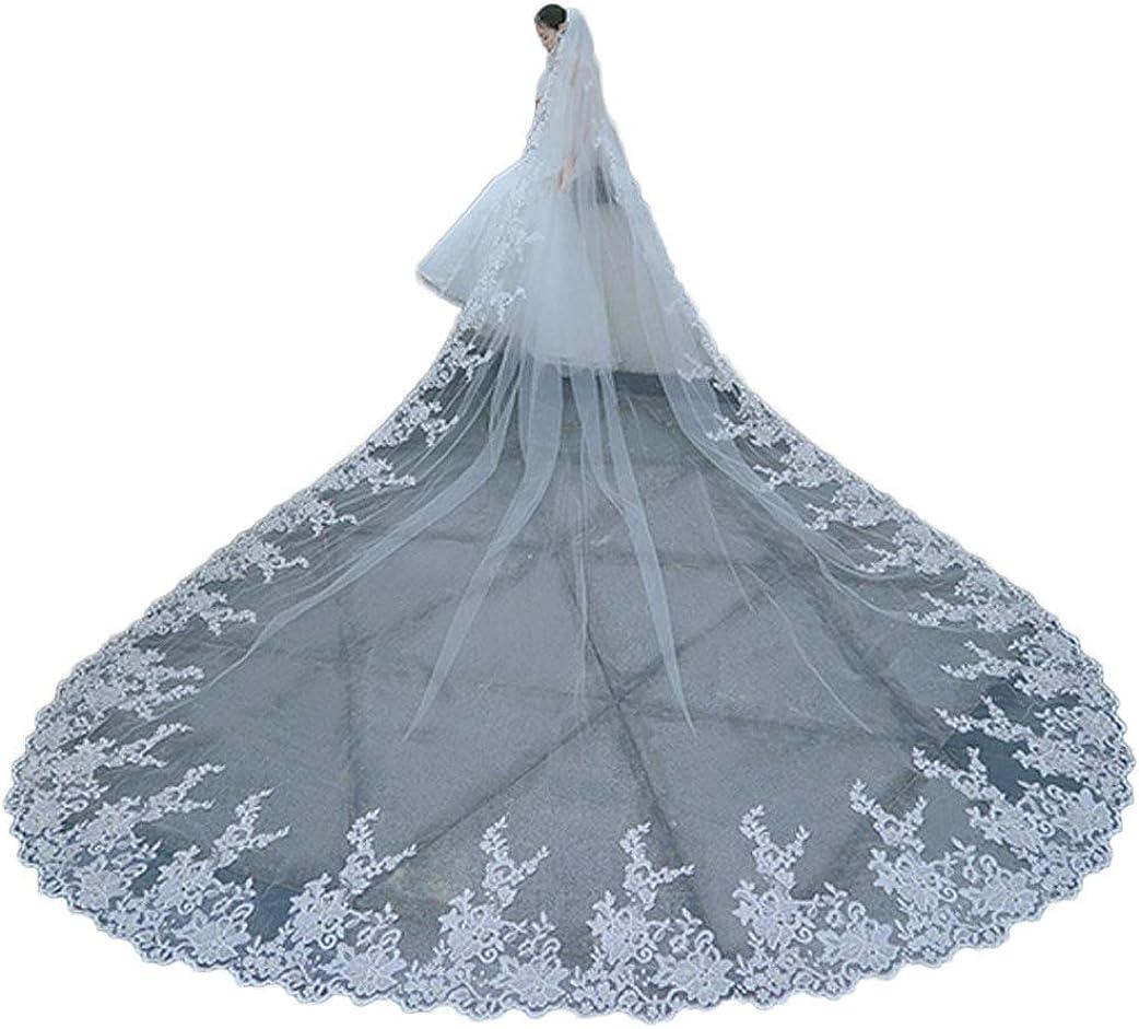 Long Lace Edge Wedding Veils for Brides 2 Tier Long Train 4m