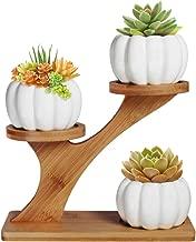 3pcs Pumpkin Succulent Pots with 3 Tier Bamboo Saucers Stand Holder - White Modern Decorative Ceramic Flower Planter Plant Pot with Drainage - Home Office Desk Garden Mini Cactus Pot Indoor Decoration