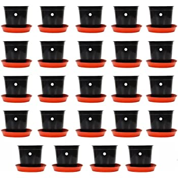 Kraft Seeds Gamla/Planter/Pot (black) with Bottom Plate/Tray (terracotta) (6 inch, 24 Pieces)