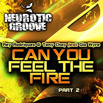 Can You Feel the Fire - Remixes