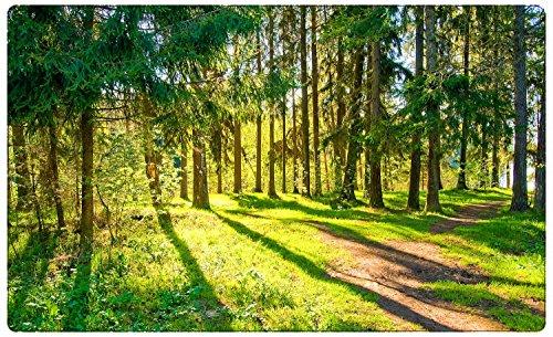 Wald Bäume Natur Wandtattoo Wandsticker Wandaufkleber R1173 Größe 60 cm x 90 cm