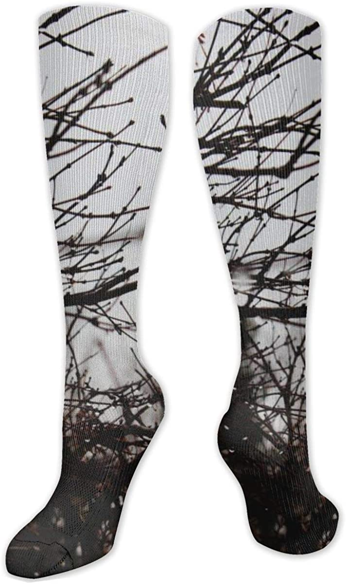 Brown Tree Branches Drops Knee High Socks Leg Warmer Dresses Long Boot Stockings For Womens Cosplay Daily Wear