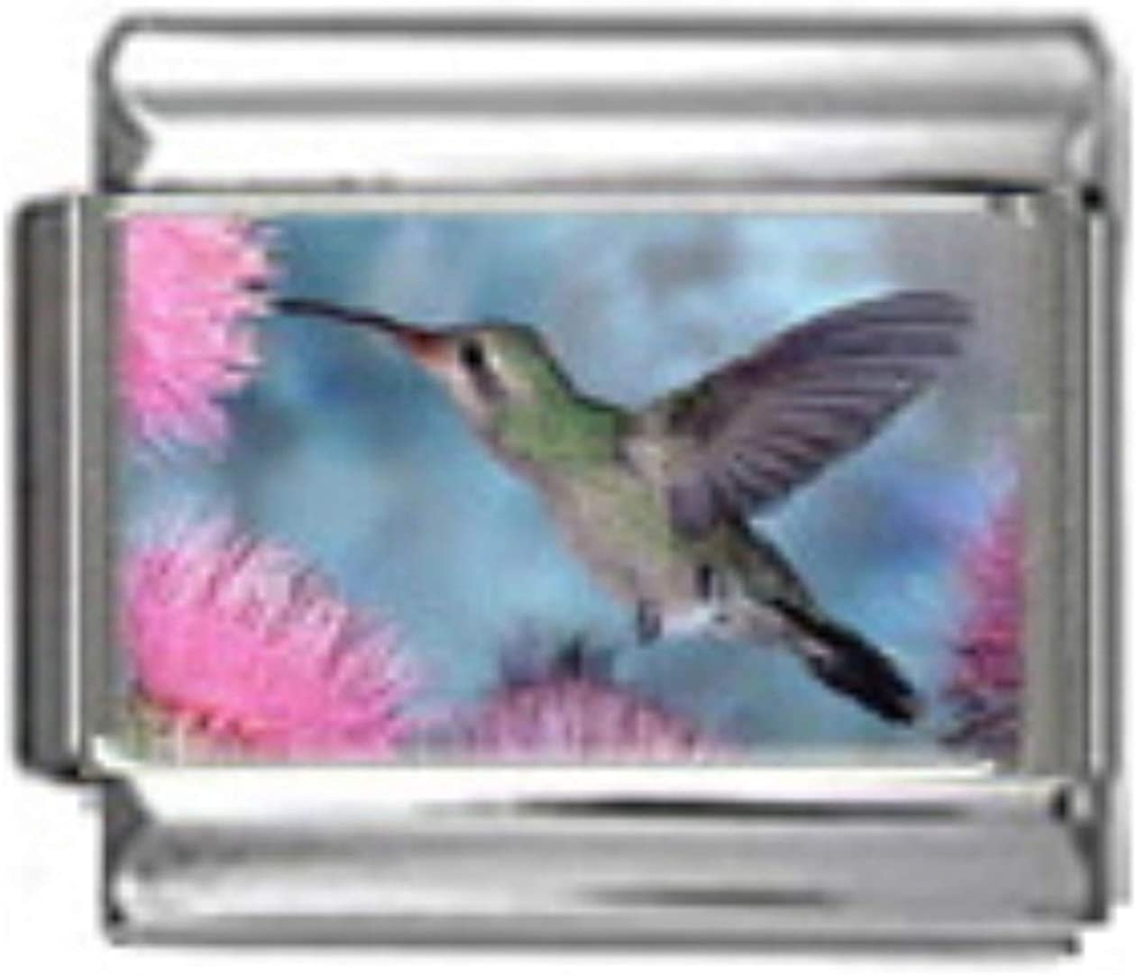 Stylysh Charms Hummingbird Bird Photo Italian 9mm Link BI009 Fits Traditional Classic