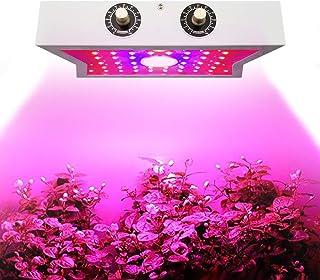 LED Plant Growing Lamps,1200W COB Full Spectrum Grow Light Adjustable 4 Brightness,Indoor Grow Lights for for Indoor Plants,Micro Greens,Clones,Succulents,Seedlings