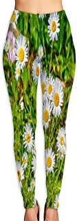 Cyloten Goat Island Wild Daisies Maine Yoga Pants Washable Legging Tights Quick Dry Sportswear for Women Girl Workout