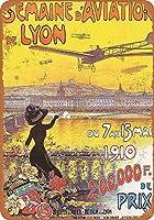ビンテージスタイルの金属サイン、インチ、1910航空博覧会リヨンフランス、錫壁サイン警告サイン金属プラークポスター鉄絵画アート装飾バーホテルオフィス寝室ガーデン