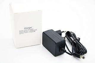 Oplader voor kinderauto, elektrische auto, kindermotorfiets, kindervoertuig, 12 V of 6 V (12 V)