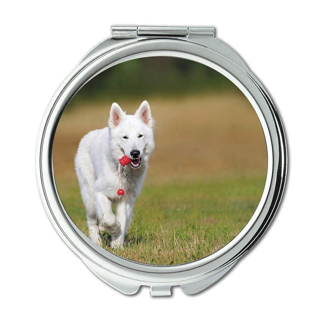 ホイール気体の線ミラー、トラベルミラー、スイスの羊飼い犬犬白い動物の遊びのペット、ポケットミラー、携帯用ミラー