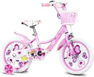 HDGZ Kids' Bikes, Children's Bicycle 12/14 Inch Girl Bicycle Outdoor Sports Bicycle 2-6 Years Old Child Girl Bicycle (Colo...