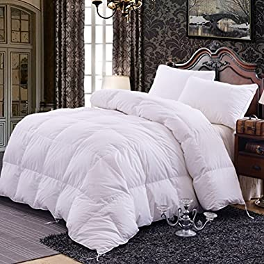 Topsleepy 50% Goose Down and 50% Feather Filling Queen (88-by-88-Inch) Bedding Comforter, White