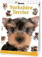 The Dog Desk Calendar 2020 Yorkshire Terrier