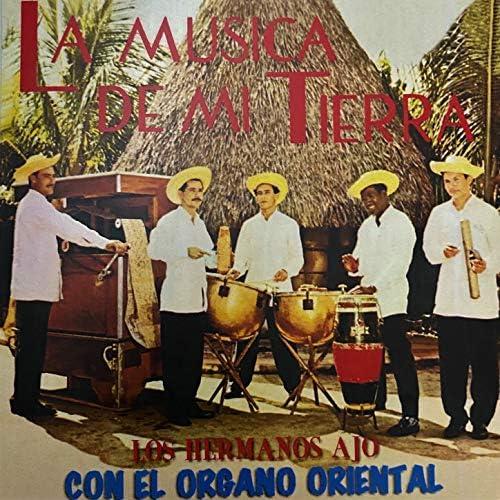 Los Hermanos Anoz & El Organo Oriental