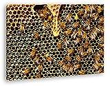 deyoli atemberaubende Honigwabe mit Bienen im Format: 80x60