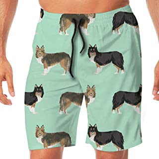 Mens Swim Trunks Little Corgi Dog Pattern Bone Blue Beach Board Shorts