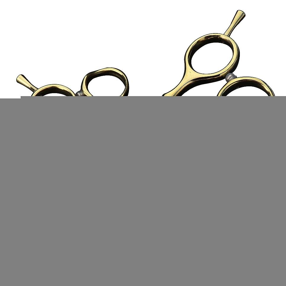 支給ピアニストアマチュアZT-TTHG 理髪はさみ、日本440C鋼ウェアラブルと耐久性はさみ、ネジ調整緑のダイヤモンドの人格はさみ、金(はさみセット)