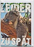 Geburtstagskarte Nachträglich Koala